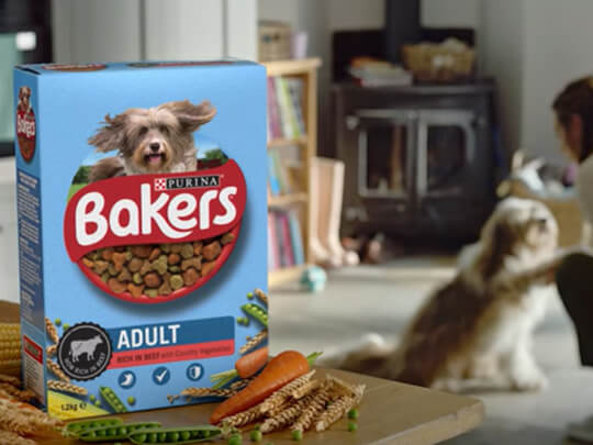 Box of Bakers food on table with dog in a background