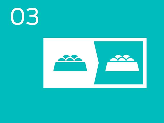 03 food bowl infogrpahic