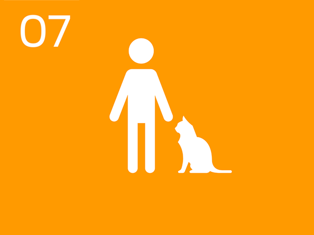 07 Person with cat infographic