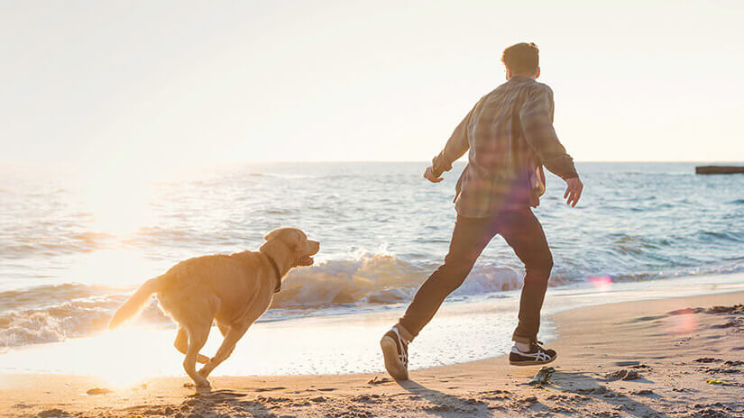 Man and dog running on the beach