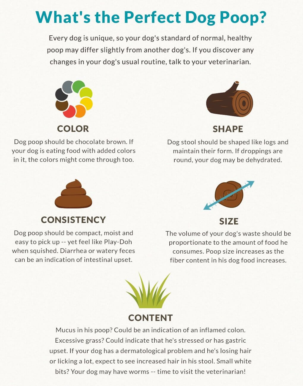 Perfect dog poop infographic