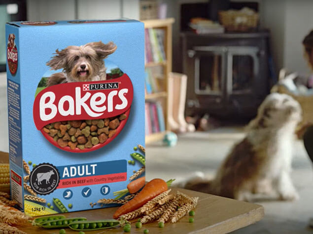 Bakers dog