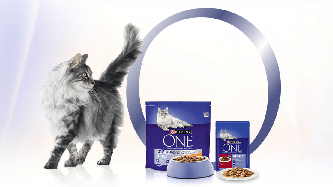 Purina ONE Bifensis listing page