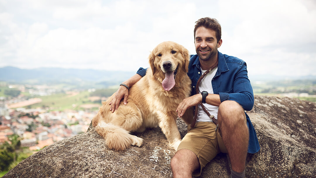 Dog sitting on mountain with man