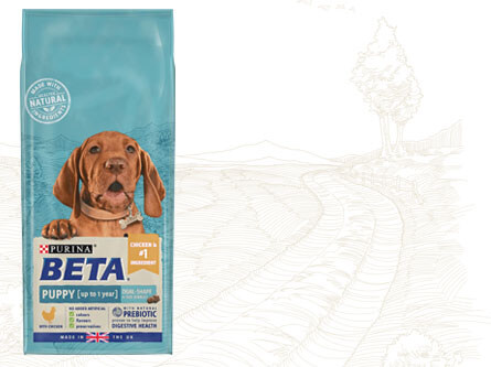 Beta puppy product