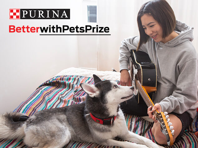Better with pets prize woman sat with dog
