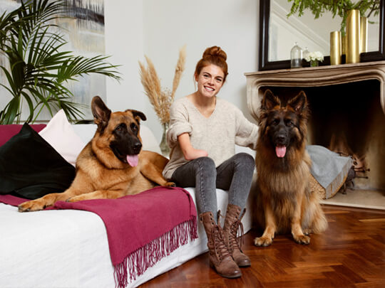 Woman sitting on a sofa between her two german shepherds.