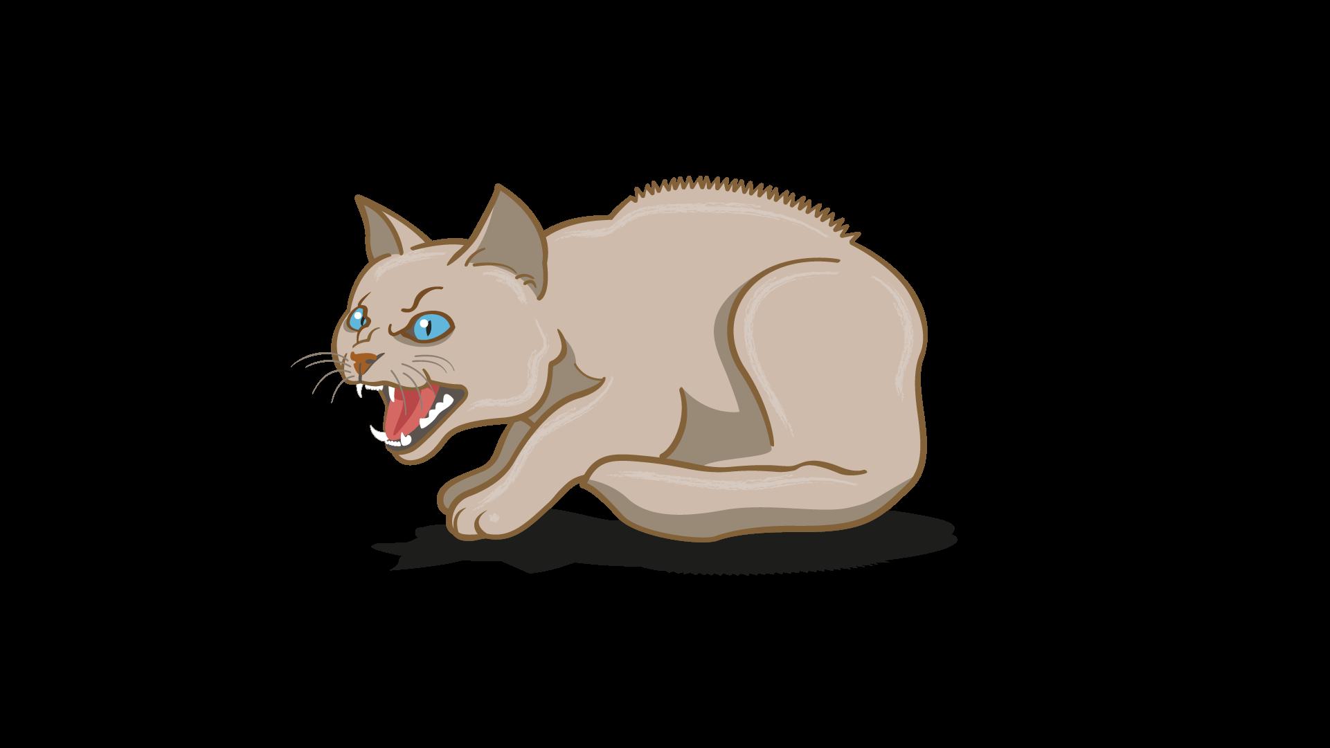 lenguaje corporal de gato enojado