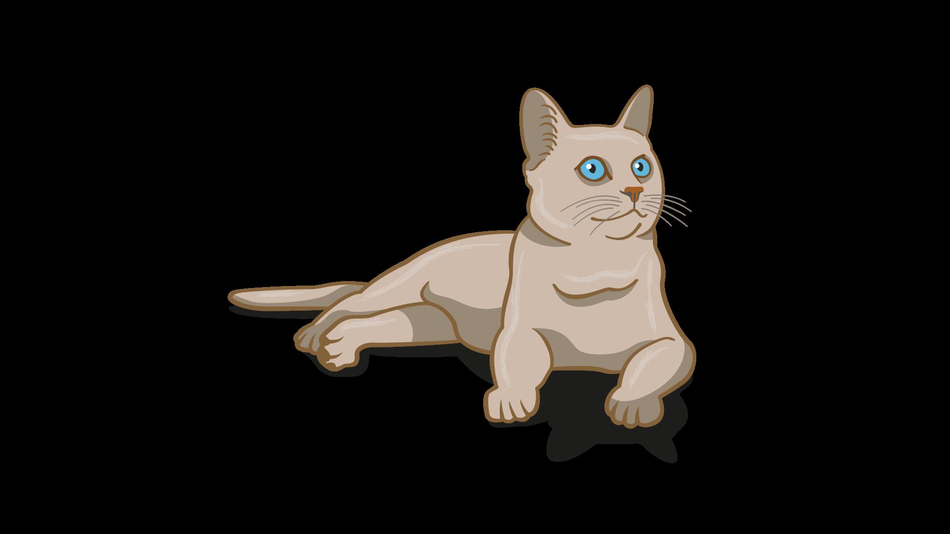 lenguaje corporal relajado del gato
