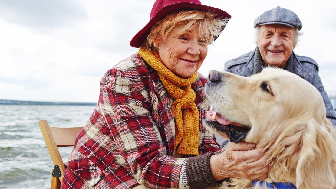 older couple enjoying the beach with their golden retriever