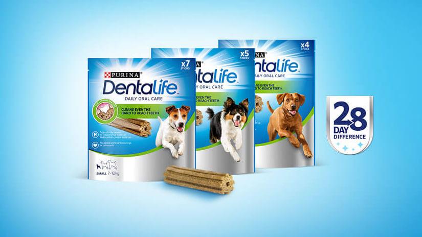 dentalife 28 day challenge