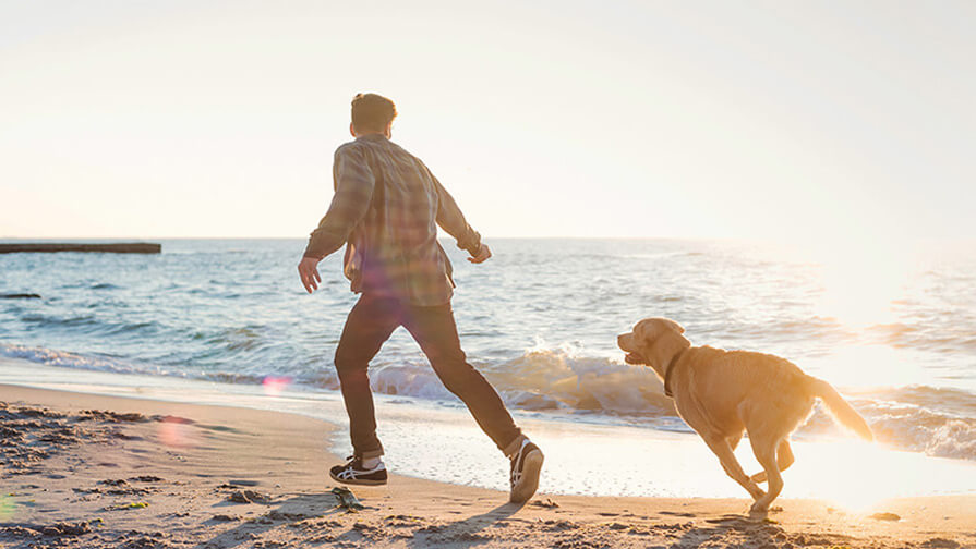 man running on beach with dog