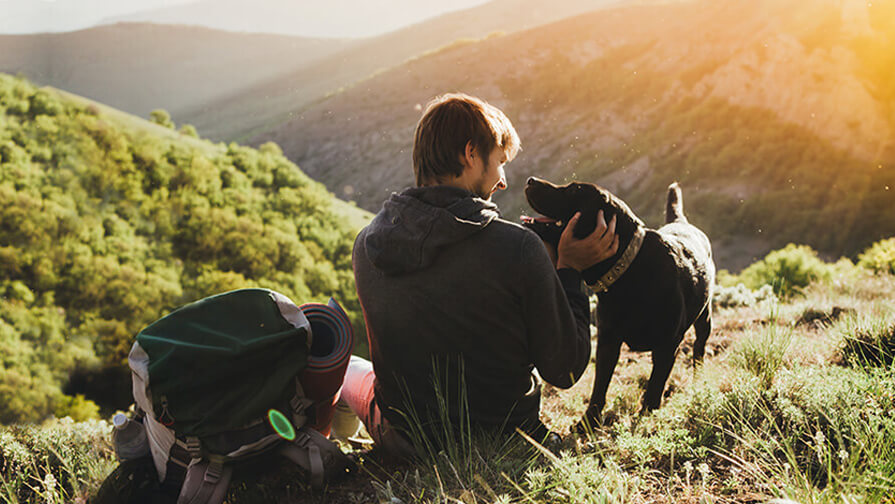 man sitting in mountains with dog
