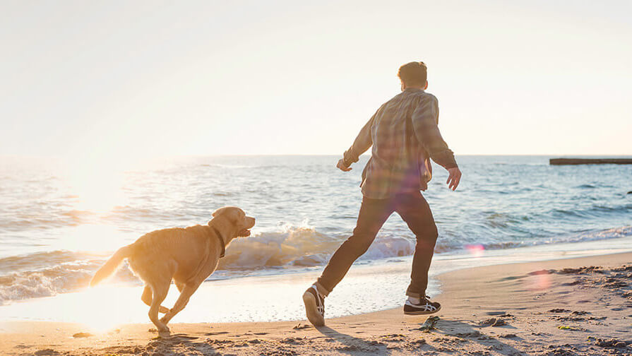 man and dog running down the beach