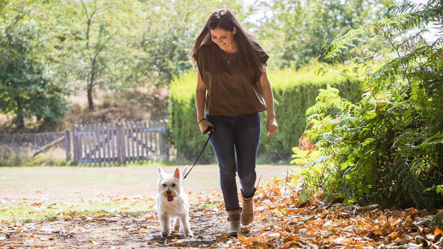 Purina employee walking in the woods with her dog