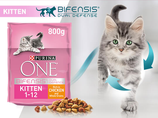 Purina One Kitten try for free