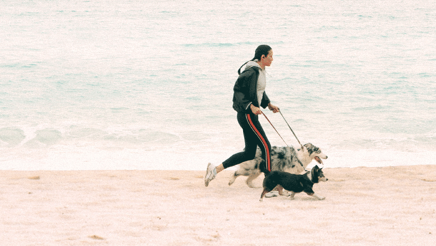 Woman running on a beach with two dogs