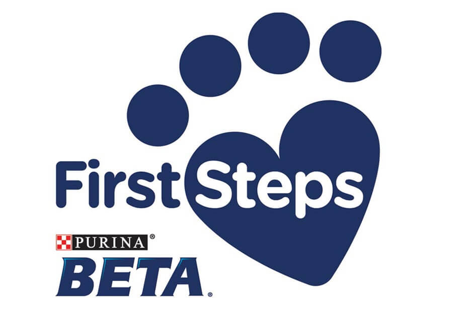 Beta First Steps