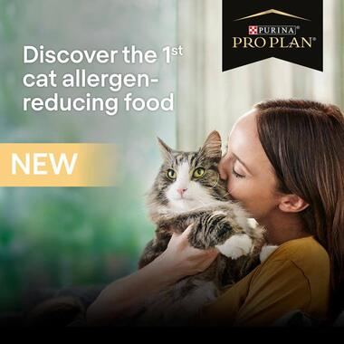 PRO PLAN Adult 7+ Allergen Reducing Sterlised LIVECLEAR Turkey Dry Cat Food